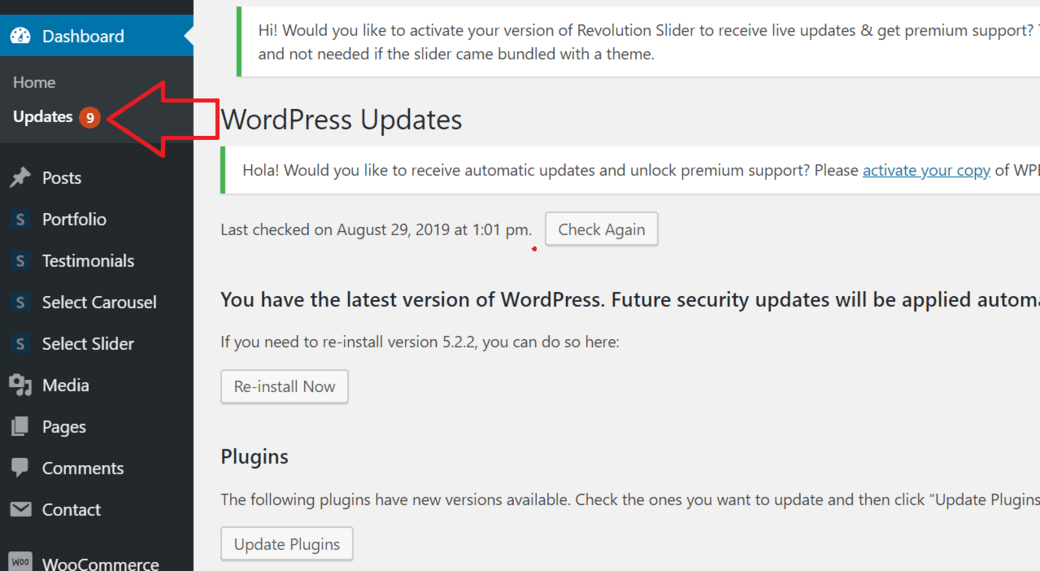 how to update your WordPress