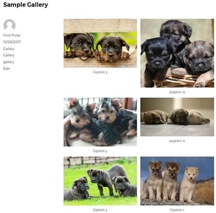 wordpress image gallery